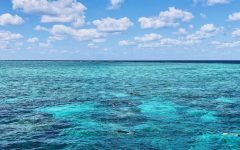 The waters of the Great Barrier Reef that Maeve got to snorkel in this summer.