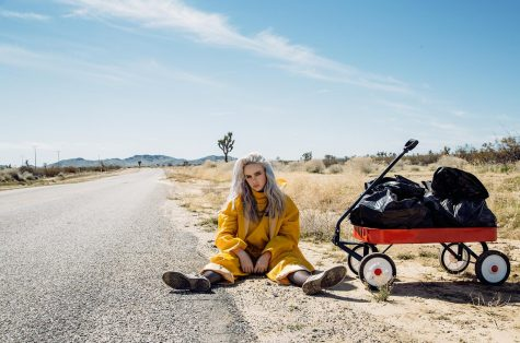 """Billie Eilish: """"dont smile at me"""" Album Review"""