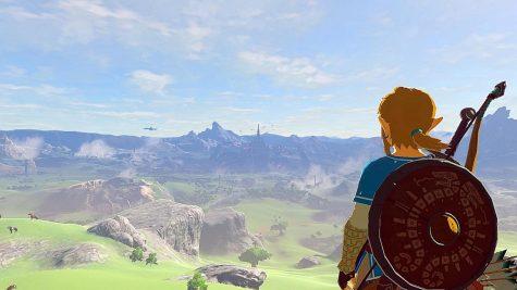 Link looking over Hyrule