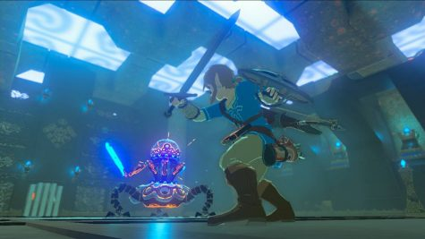 Link fighting at gaurdian scout