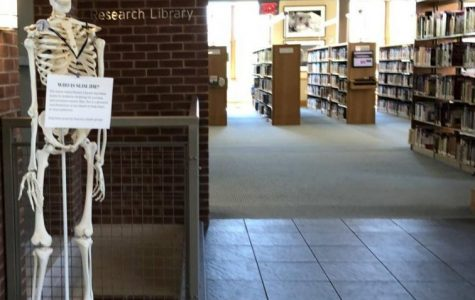 The Darien Library's 10th Anniversary: A Great Place for Our Community