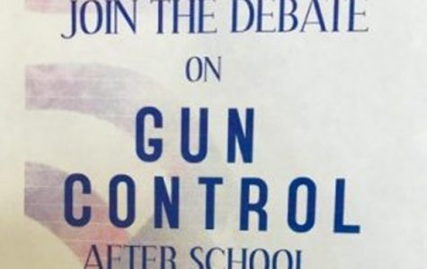 What is Actually Going on in the Gun Control Debate?