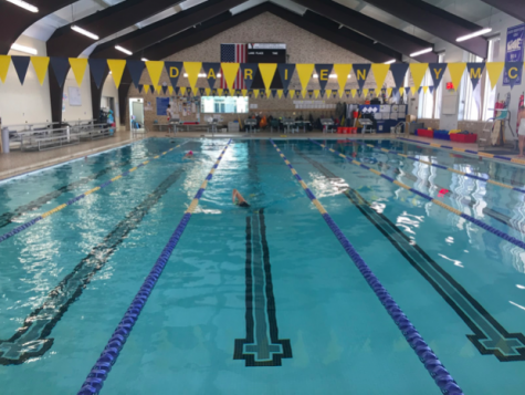 Swim and Dive Teams Try to Keep Heads Above Water