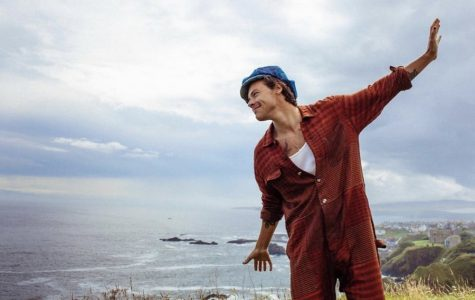 Harry Styles' Breaks The Fine Line From His Band Days And His Solo Career